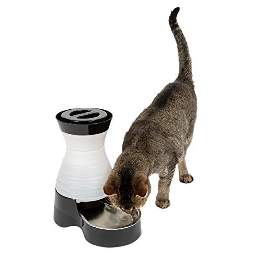 (PetSafe Healthy Pet Water Station, Dog and Cat Water System with Stainless Steel Bowl, Small, 64 oz.)