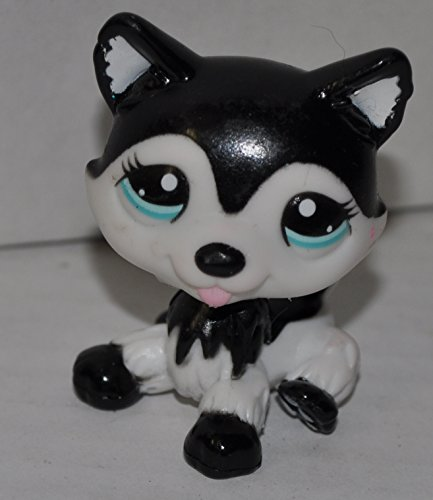 Husky #2246 (Black & White, Blue Eyes) (Target Exclusive) - Littlest Pet Shop (Retired) Collector Toy - LPS Collectible Replacement Single Figure - Loose (OOP Out of Package & Print) (Black And White Great Dane With Blue Eyes)
