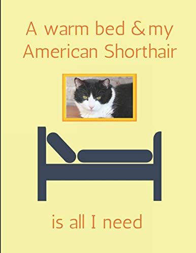 A Warm Bed & My American Shorthair Is All I Need: Lined Journal Note Book