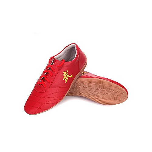 Men Adults Chinese Tai-Chi Wu Shu Kung Fu Shoes Basic Style for Daily Training Morning Exercises Shoes (Red, US 9.5=44)