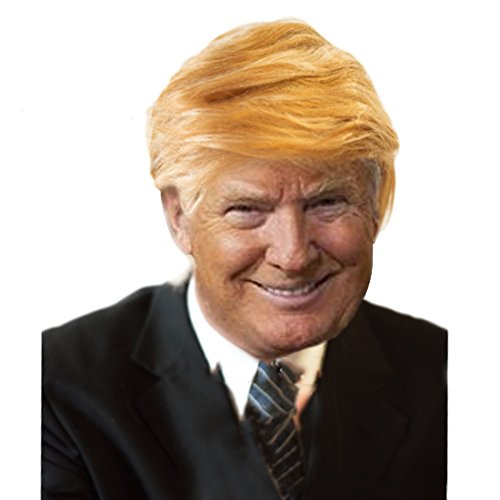 Costume Halloween 2016 Uk (Halloween Costumes Donald Trump Wig Adult Costume Accessory PresidentialHairpiece Wigs,Set of 2)