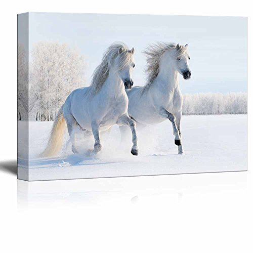 Two Galloping White Welsh Ponies Horses on Snow Field Wall Decor