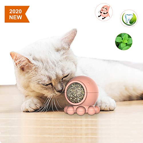 Catnip Ball