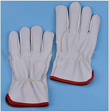 手袋 日常 実用 革製作業用手袋–ドライバーの手袋、厚手のデニム手袋、快適な暖かい手袋、安全作業用手袋、中 (Color : White, Size : Five pairs)