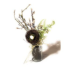 RAZ Imports Artificial Greenery PussyWillow/Fern/Nest Arrangement in Glass Jar 103