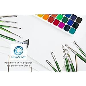 Buy school supply now! Premium Quality 12x paint brushes. Use for Acrylic, watercolour, oil, face painting, gouache. Sizes 20-25cm - including free black carry case