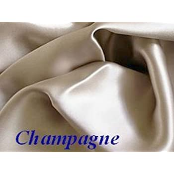 this item champagne 100 mulberry silk pillowcase for hair and facial beauty