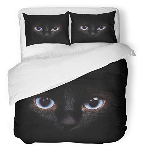 Emvency 3 Piece Duvet Cover Set Breathable Brushed Microfiber Fabric Blue Dark Eyes of The Siamese Cat in Darkness Brown Cheshire Animal Space Female Bedding with 2 Pillow Covers Full/Queen Size