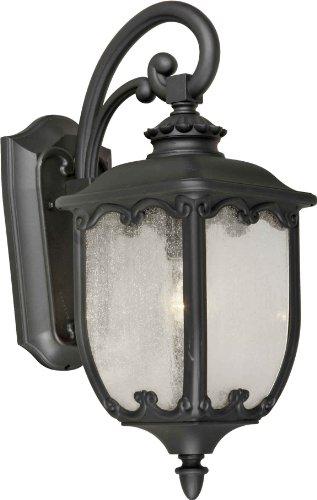 Forte Lighting Outdoor Sconce in US - 4