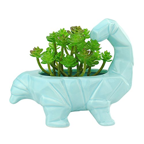 VanEnjoy 6 Inch Cute Cartoon Dinosaur Shape Ceramic Succulent Planter, Water Culture Hydroponics Bonsai Cactus Flower Pot,Air Plant Vase Holder Desktop Decorative Organizer (Supersaurus, Blue)