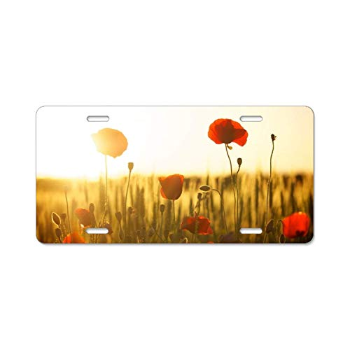 YEX Sunset Poppies License Plate Frame with 4 Holes Novelty Car Licence Plate Covers Auto Tag Holder Tag Sign 12