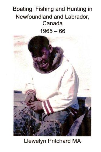 Canadian Seal Hunt Animal - 2