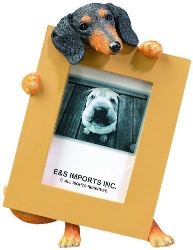 Dachshund (Black Tan) 2.5  x 3.5  Picture Frame by E&S Imports, Inc