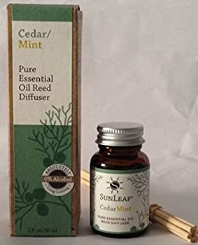 SunLeaf Naturals Pure essential oil mini reed diffuser 0.9oz 'Cedar mint'
