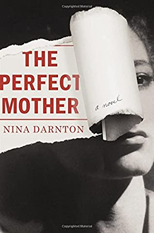 book cover of The Perfect Mother