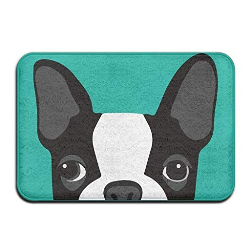 X-Large Funny Cartoon Boston Terriers Big Eyes Black and White Pattern Rectangle Front Welcome Door Mat Outdoor Indoor Entrance Doormat Durable Heat-Resisting Non-Slip Rug Size 15.7x23.6inch (Entrance Waterhog Rectangle Mat)