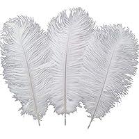 Sowder 10pcs plumas de avestruz 12-14 pulgadas (30-35cm) para la decoración de la boda en casa (blanco)