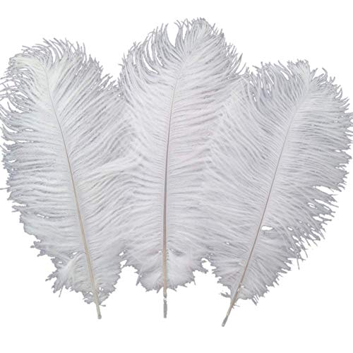 Sowder 10pcs Ostrich Feathers 12-14inch(30-35cm) for Home Wedding Decoration(white) -