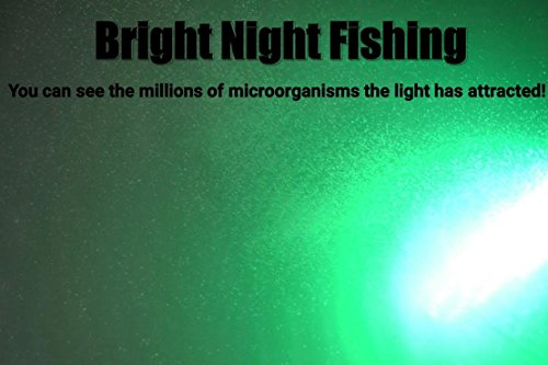 Bright Night Fishing Under Water Light Green Led 15000 Lumens Night Fishing 300 LED Green Priority Shipping Submersible Salt fresh water dock light boat crappie 12v dc (optional 110v ac) BR:15000 by Bright Night Fishing (Image #8)