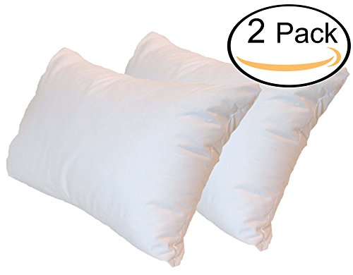 Pillowflex Premium Polyester Filled Pillow Form Inserts - Machine Washable - Oblong Rectangle Standard - Made In USA (20x26 Pack of 2) (Pillow X 26 Form 26)