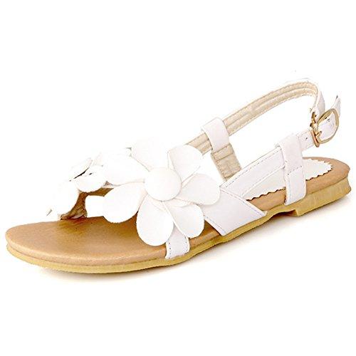 Summerwhisper Women's Boho Style Flowers Buckle Sling Back Wide Width Flats Sandals (Flower Slingback)