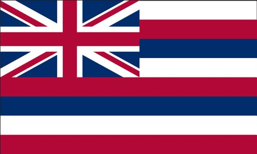 America's Flag Company SF3X5NOHI1 3-Foot by 5-Foot Nylon Hawaii State Flag with Canvas Header and Grommets