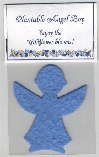 Set of 5 Plantable Wildflower Boy Angel ()