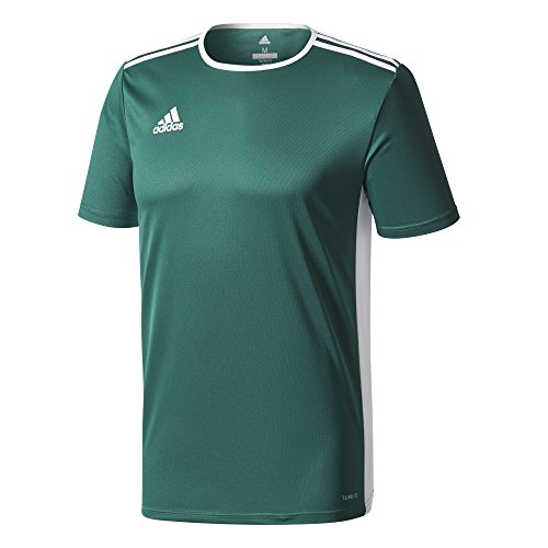 Uomo Collegiate Green white Entrada shirt T 18 Adidas HqIaw7BI