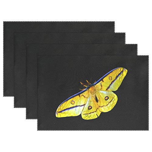 - Fengye Placemats Yellow Butterfly Insect Kitchen Table Mats Resistant Heat Placemat for Dining Table Washable 12