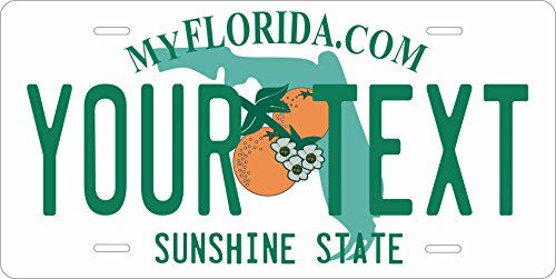 (50 State Personalized Custom Novelty Tag Vehicle Auto Car Bike Bicycle Motorcycle Moped Key Chain License Plate (Florida 2003))