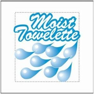 Moist Towelettes 4 X 6 100 Count