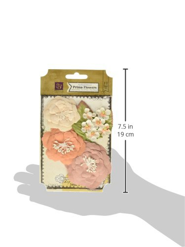 Prima Marketing Cabriole Paper Flowers 1'' To 3'' -Almond by Prima Marketing (Image #2)