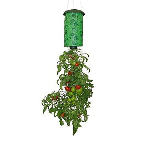 CorldifHangingTomatoPlant,Container,Accessories,VegetableGrower,UpsideDownPlantHolderPotHangingSky
