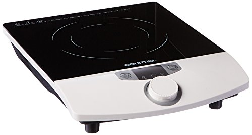 Gourmia GIC-100 Multifunction Portable 1800W Induction Cooker Cooktop Countertop Burner : OK for the price