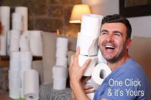 Wize Choice 500 Sheet 2 Ply, Toilet Paper, Ultra-Soft, Septic Safe, 24 Epic Rolls, RV Safe