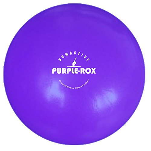 "Humactive Purple-Rox 10"" Mini-Fitness Exercise Ball"