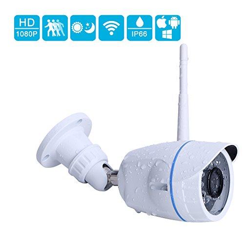 outdoor webcams - 9