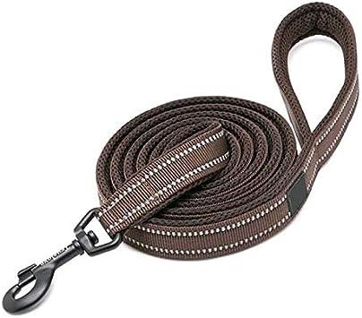 PTICA - Cinturón para Perro con arnés y Collar de Nailon ...