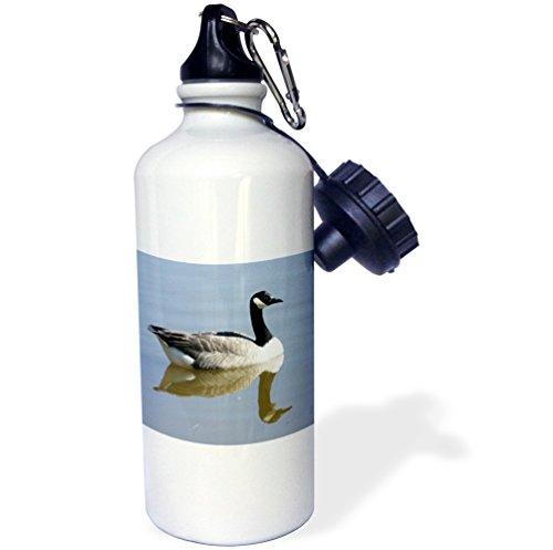 3dRose wb_23921_1 Canadian Goose Sports Water Bottle, 21 oz, (Goose Bottle)