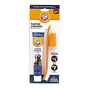 ARM & HAMMER Paste & Brush Set 5