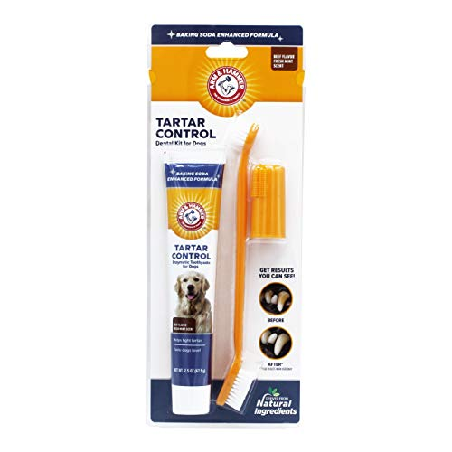 (Arm & Hammer Dog Dental Care Tartar Control Kit for Dogs | Contains Toothpaste, Toothbrush & Fingerbrush | Reduces Plaque & Tartar Buildup | Safe for Puppies, 3Piece Kit, Beef Flavor)