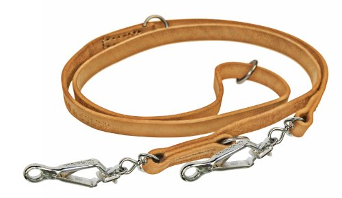 Dean & Tyler Dynamite Multifunctional Dog Leash with Herm Sprenger Hardware, 5-Feet by 1/2-Inch, Tan by Dean & Tyler