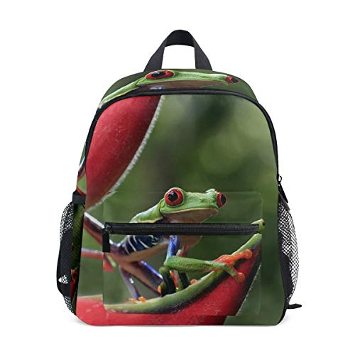 Puerto Rico Tree Frog Floral Kid Backpack 12 inch Toddler Bookbag Travel School Bag