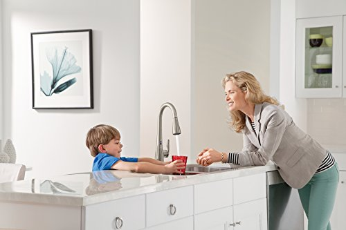 Best Kitchen Faucet Reviews Amp Buying Guide Kitchensanity