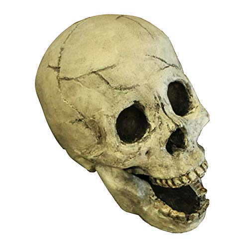 Myard Fireproof Human Fire Pit Skull Gas Log for NG, LP Wood Fireplace, Firepit, Campfire, Halloween Decor, BBQ (White, 1pk)