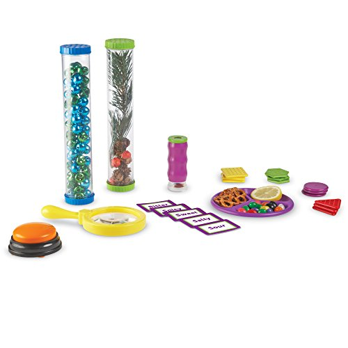 Learning Resources Primary Science Five Senses Activity Set