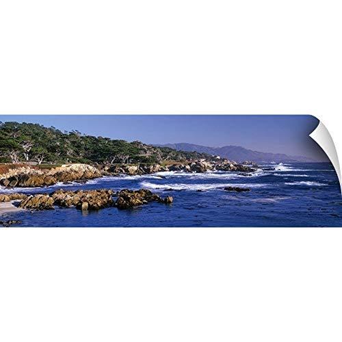 - CANVAS ON DEMAND CA, Monterey Peninsula, Carmel, 17-Mile Drive at Pebble Beach, Harbor Seals Wall Peel Art Print.