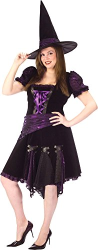 Plus Punk Witch Adult Costumes Purple (Witch Purple Punk Adult Plus Adult Womens)