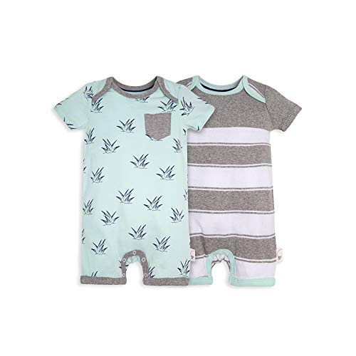 (Burt's Bees Baby Baby Boys Short Sleeve Rompers 2-Pack, 100% Organic Cotton One-Piece Coverall, Sprouts/Stripe, Newborn)