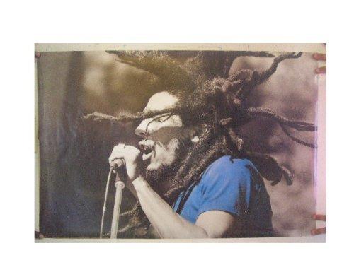Bob Marley Poster Concert Shot